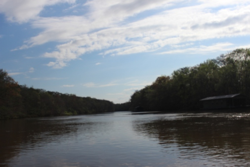 The Apalachicola River system has for years been part of a dispute between Georgia, Florida and Alabama over water rights. Photo: Annette Birch